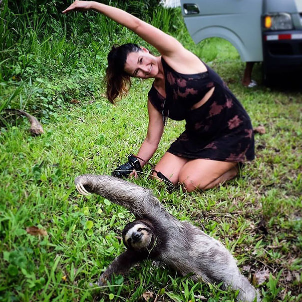Tourist Girl Stopped To Join Yoga Sloth Lesson