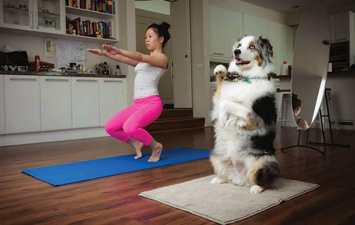 Yogi Practicing Together With Her Dog