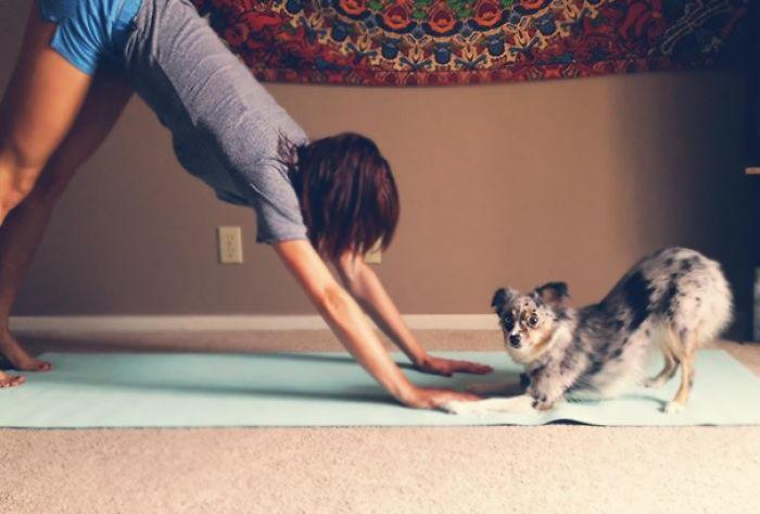 Yoga Buddies