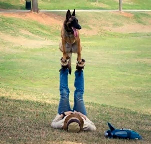 Dog Acro Yoga