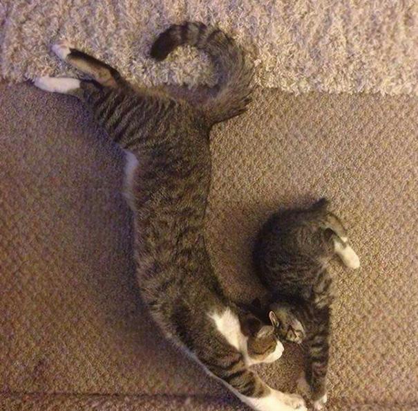 Yoga Bond