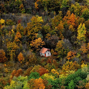 10+ Lonely Little Houses To Get Away From This World