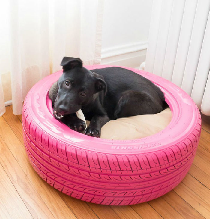 Stylish Dog Bed From A Recycled Tire