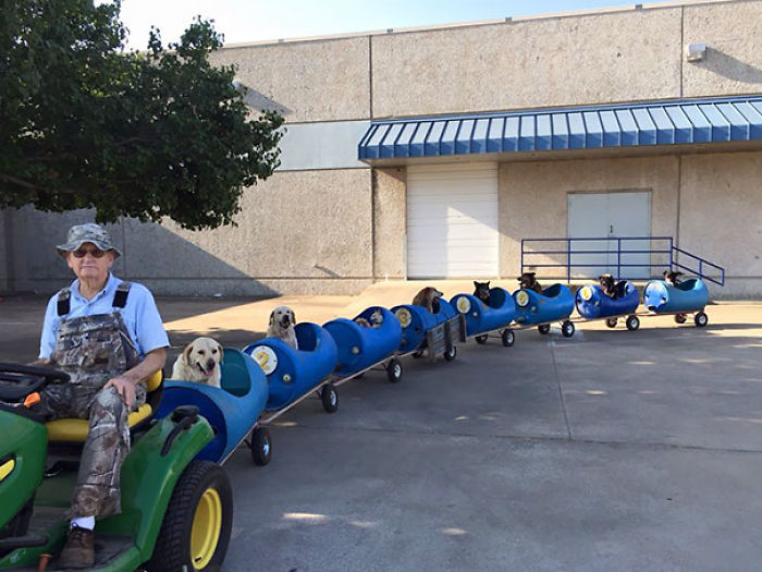 80-year-old Man Build This Train To Take Rescued Stray Dogs On Adventures