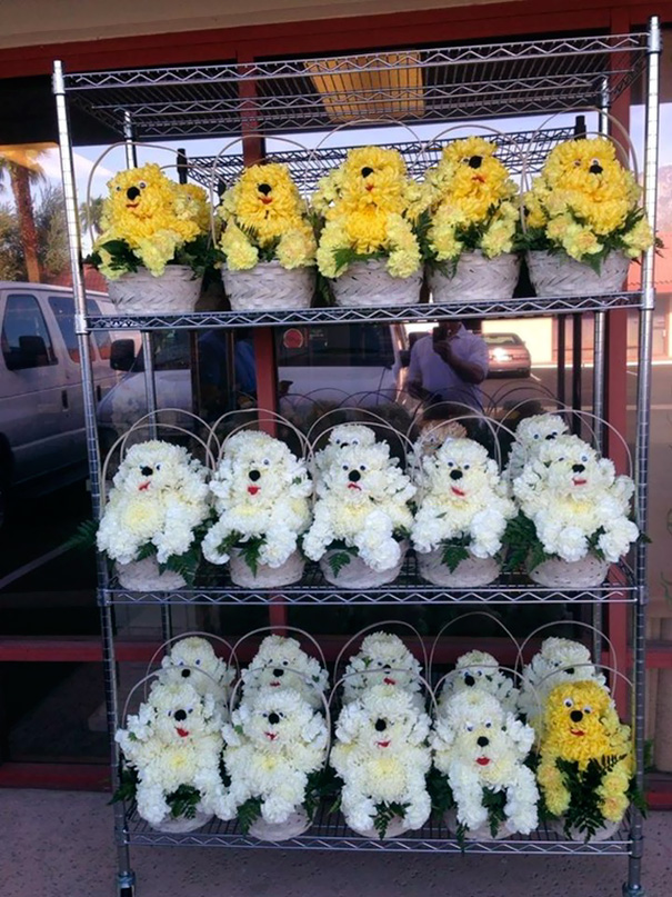 My Friend Owns A Floral Store And Made These Puppy Baskets For A Dog Rescue Fundraiser