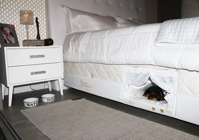 Even If You Don't Let Your Pet To Hop On Your Bed, This Compartment Solves The Problem - You Can Finally Sleep Together With Your Dog!