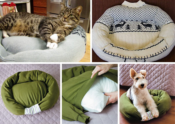 Diy cama de mascota con un suéter