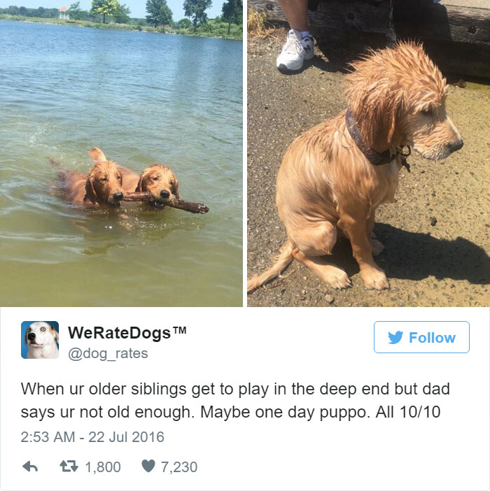 When Ur Not Old Enough To Play In The Deep End. All 10/10