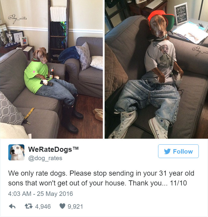 Please Stop Sending in Your 31 Year Old Sons That Won't Get Out Of Your House, We Only rate Dogs. 11/10