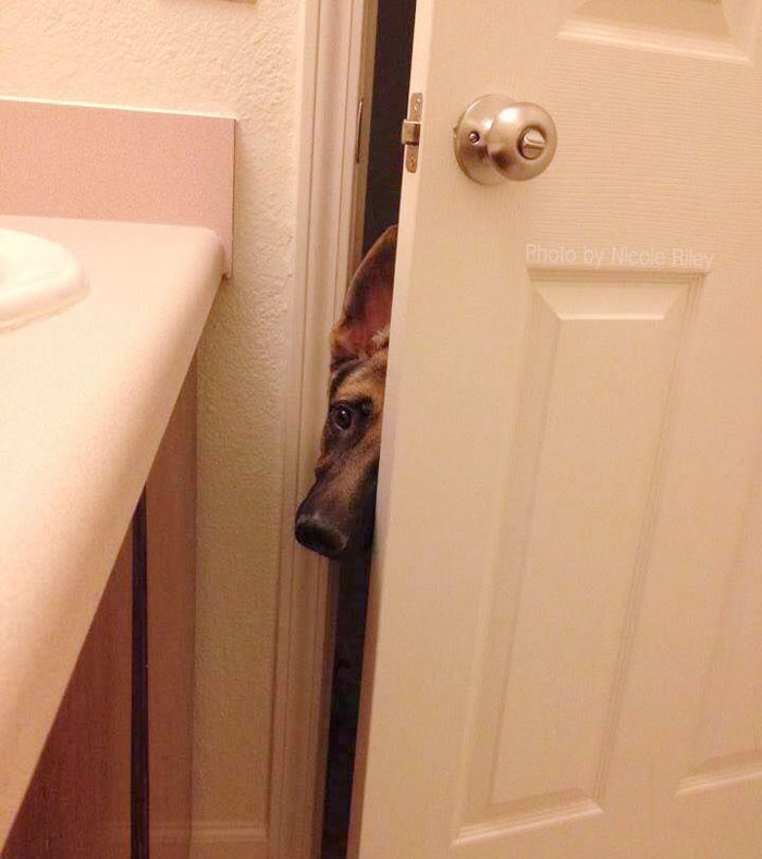 Hello There, Can I Come In?