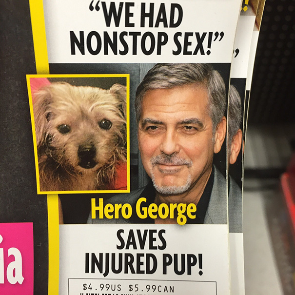Oh George, You Sly Dog