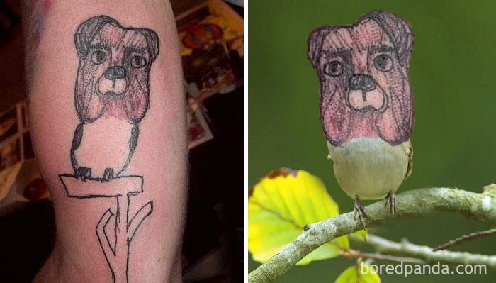 Sparrow-Dog
