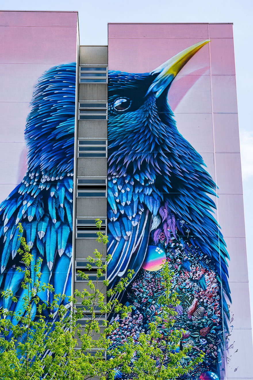 giant-starling-mural-street-art-collin-van-der-sluijs-super-a-berlin-3