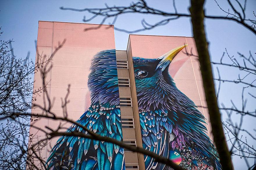 giant-starling-mural-street-art-collin-van-der-sluijs-super-a-berlin-4