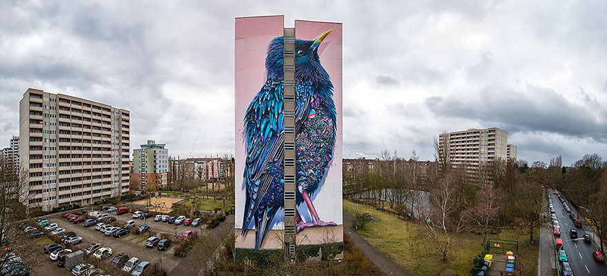 giant-starling-mural-street-art-collin-van-der-sluijs-super-a-berlin-5