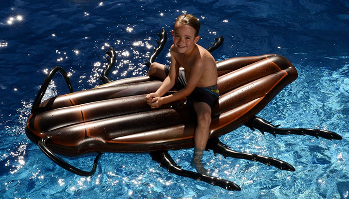 gigantic-cockroach-raft-inflatable-pool-float-kangaroo-9