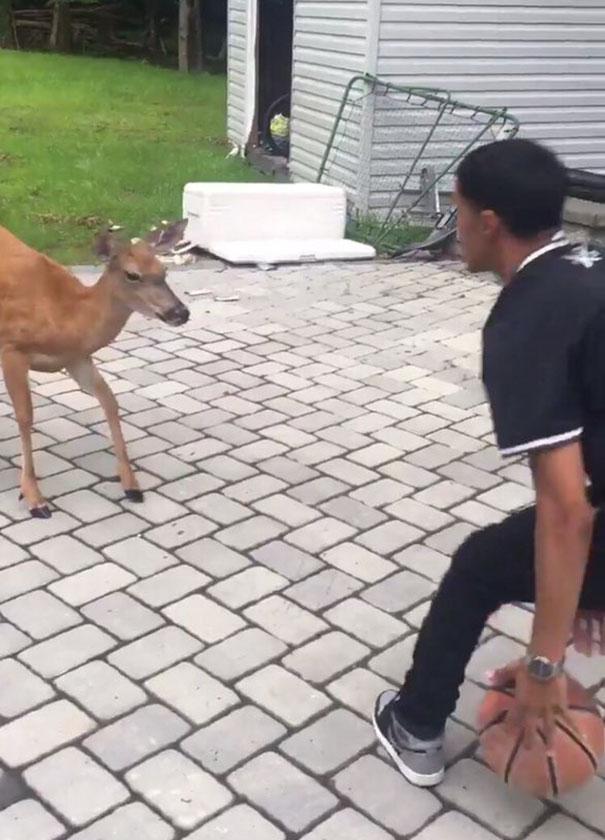 guy-deer-friend-kelvin-pena-coldgamekelv-4