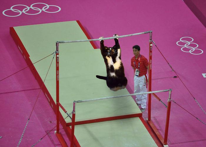 Rio 2016!!