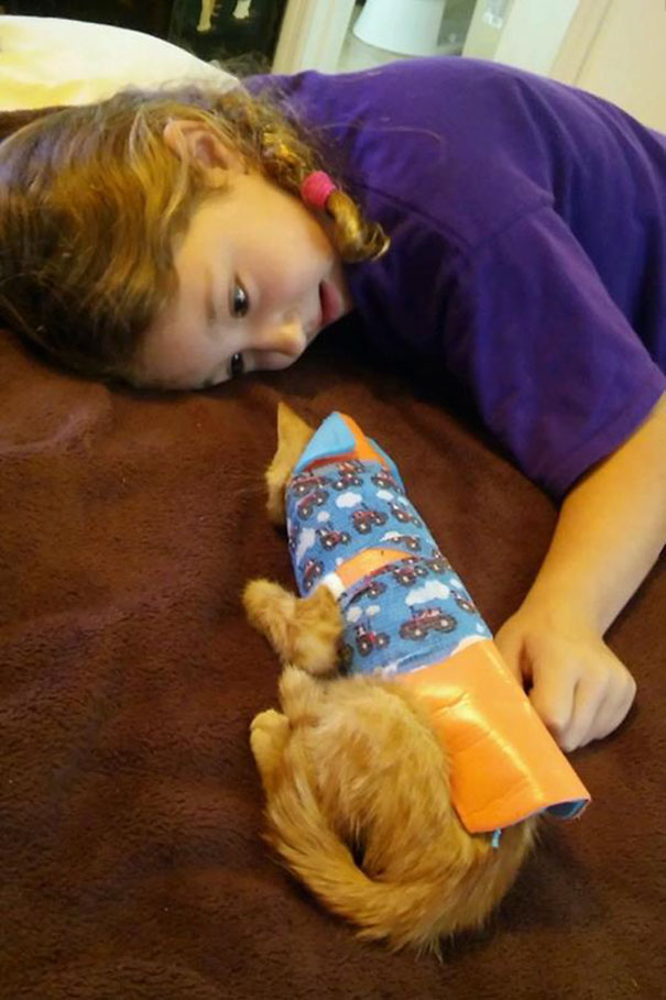 injured-kitten-hit-car-body-cast-purrito-davey-14
