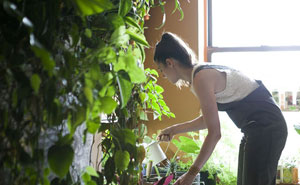 Woman Uses 500 Lush Plants To Turn Her Brooklyn Apartment Into Indoor Jungle