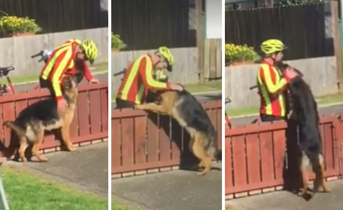 Hidden Cam Records Postman's Heartwarming Daily Routine With Misunderstood Dog