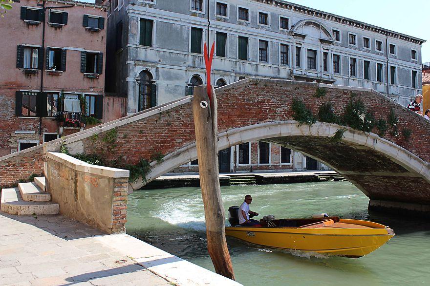 Venetian Monster