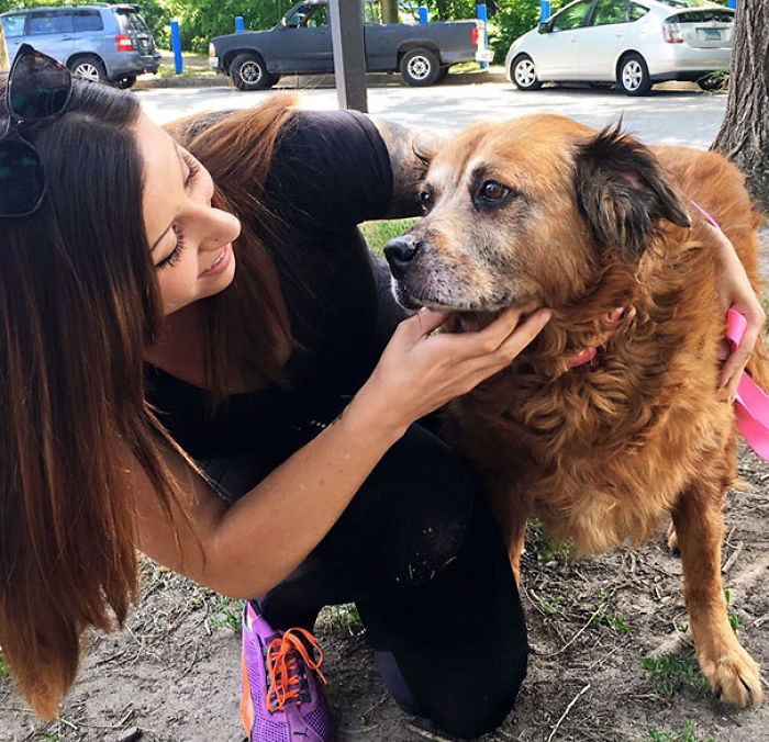 At 14 Years Old Bear Stayed At Her 76-Year-Old Owner's Side For Days After The Man Passed Away. No One Could Take Her In So She Was Turned To The Shelter And Happily Adopted After Several Days By Her New Mommy