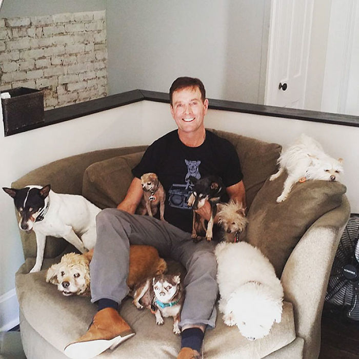 Greig Is A Super Busy Human Dad To His 10 Elder Shelter Dogs