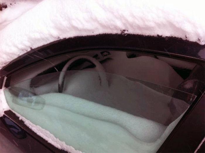 Cuando se te olvida subir la ventanilla antes de una tormenta de nieve