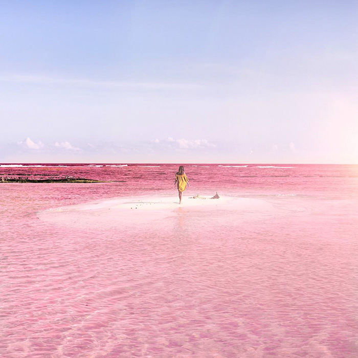 Las Coloradas Mexico Map.Naturally Pink Lagoon In Mexico Is The Most Instagram Worthy Place