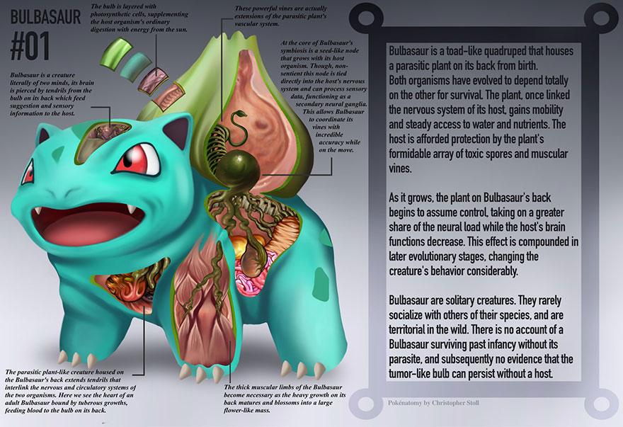 pokemon-anatomy-pokenatomy-christopher-stoll-1
