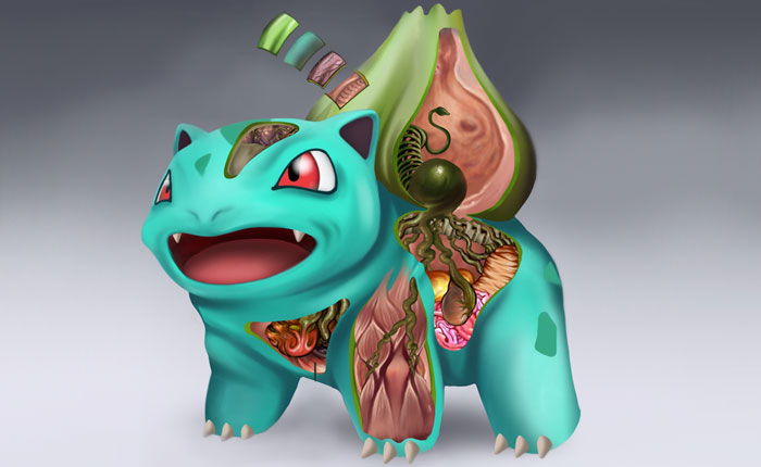 Detailed Illustrations Reveal The Anatomies Of Pokémon