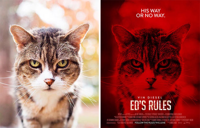 This Guy Is Turning Random People's Photos Into Movie Posters (62 New Pics)