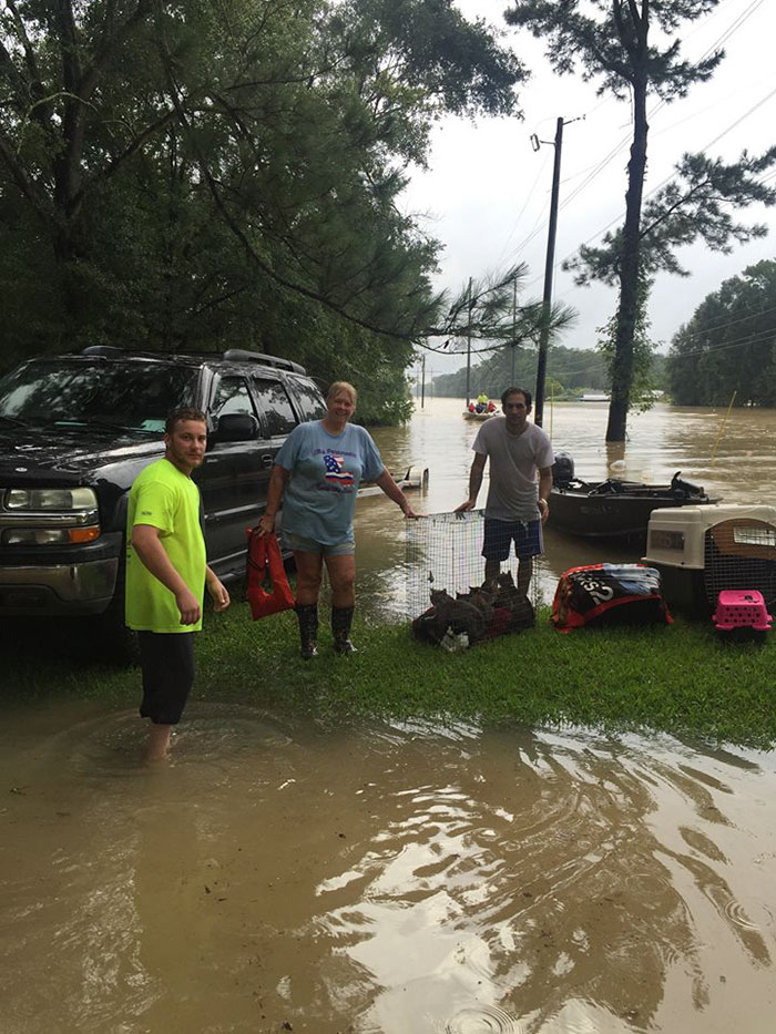 rescue-animals-drowning-louisiana-floods-13