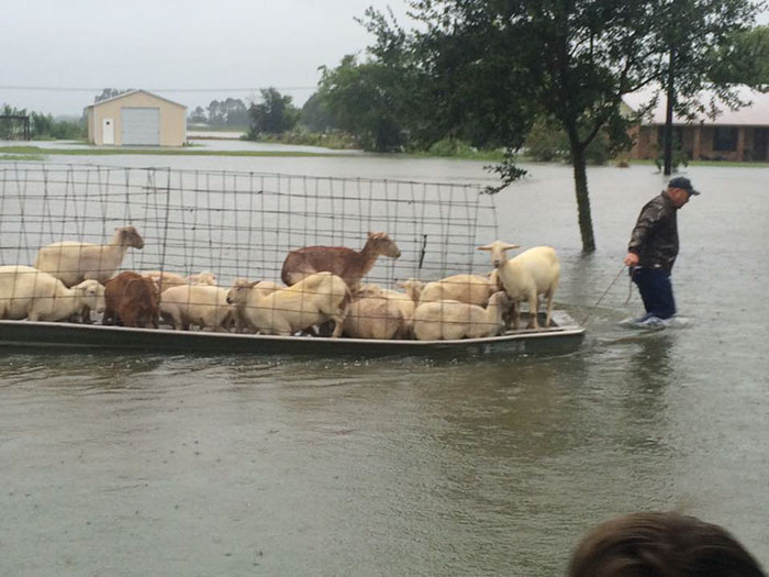 People Refuse To Leave Deadly Louisiana Floods To Save