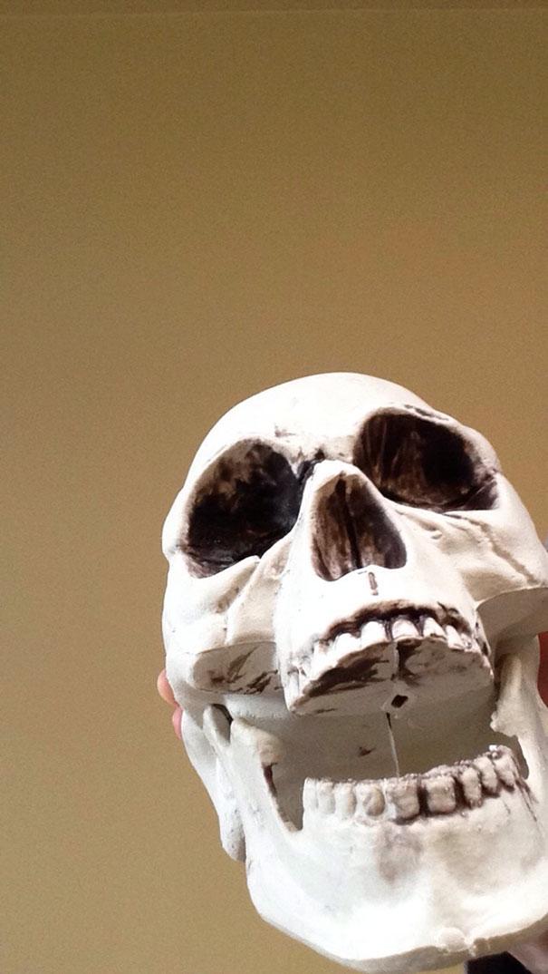 skull-humerus-snapchat-not-cooper-7