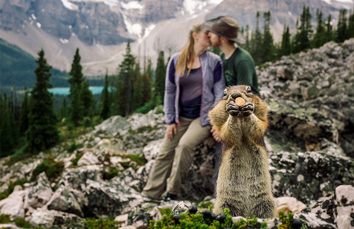 A Squirrel Photobombed Engagement Photoshoot In The Most Adorable Way Ever