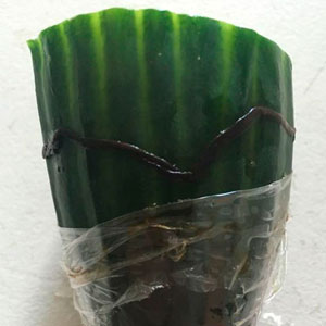 Man Finds Dead Worm In His Cucumber, Tesco's Response Is Brilliant