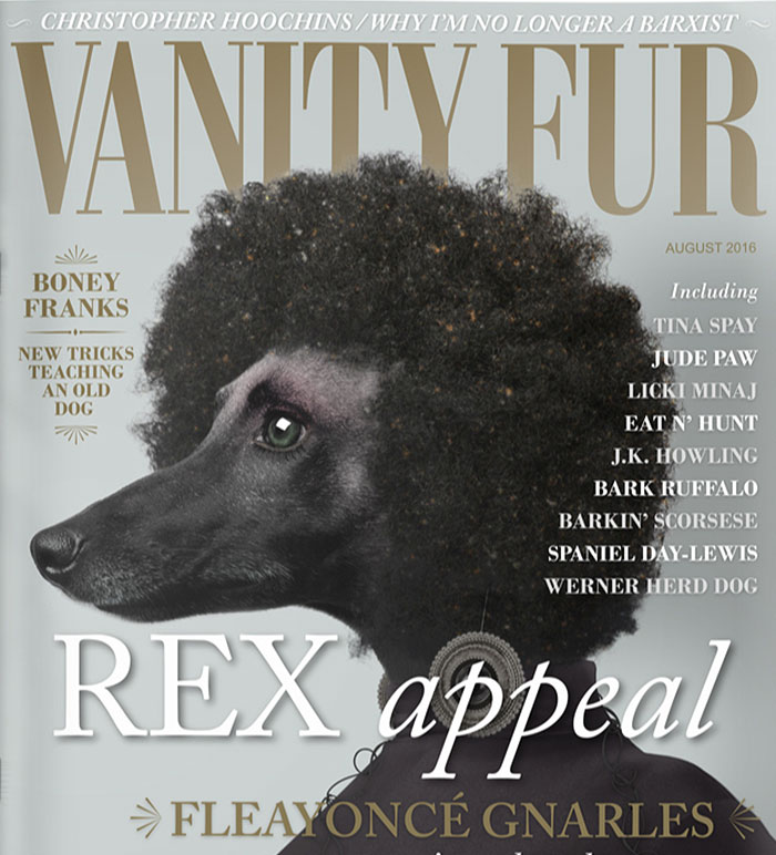 What Magazines Would Look Like If Dogs Ruled The World