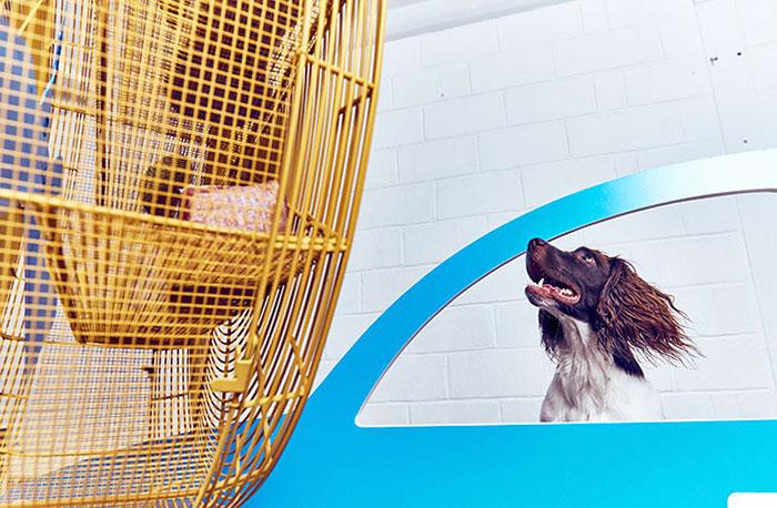world-first-dog-art-exhibition-dominic-wilcox-london-9