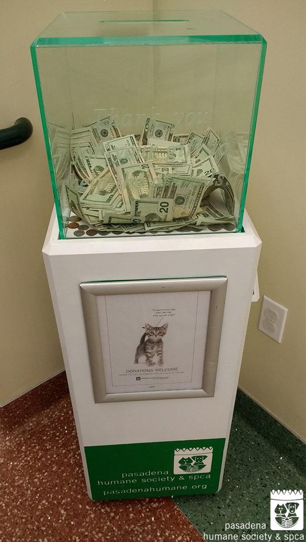 8000-dollars-anonymous-donation-animal-shelter-1