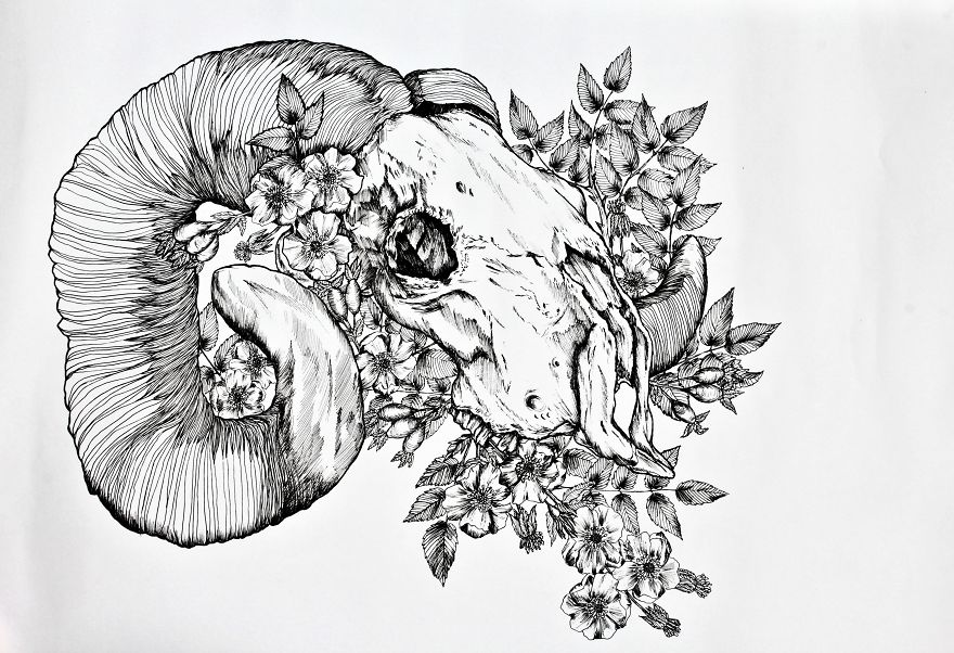 I Merge Animals And Plants Into One Drawing