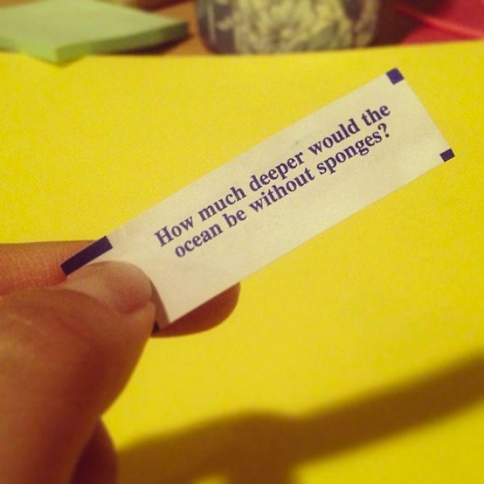 Hilarious Fortune Cookies