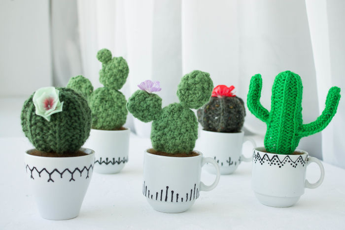 We Wanted To Change Your Opinion About Cactuses So We Made Them Pleasant To Touch