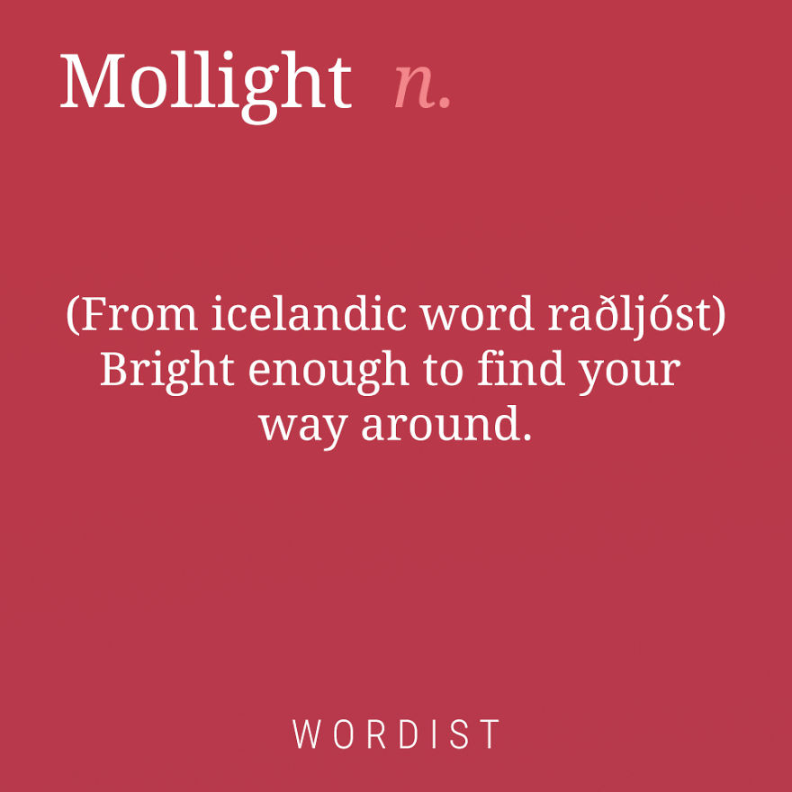 Mollight