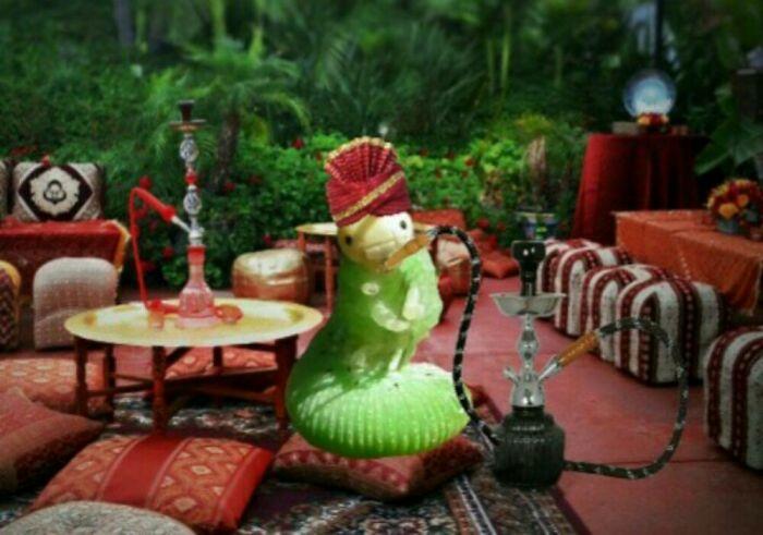 Arabian Nights King Caterpillar 💨💨