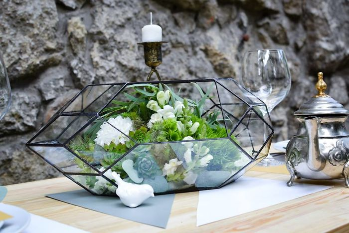 Our Stylish Geometric Terrariums Are A Perfect Home For Succulents
