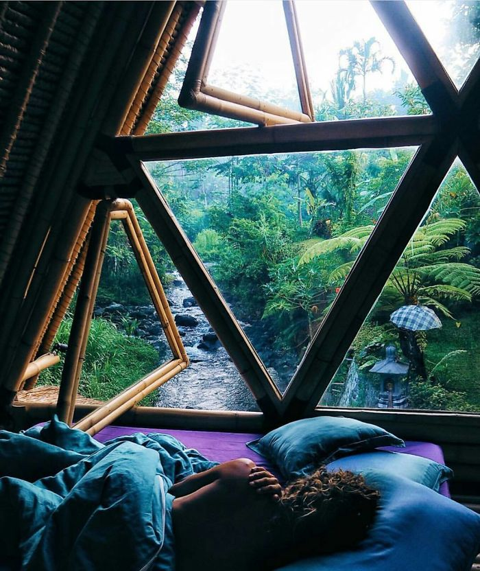 Peaceful Jungle Hideaway Ft Willows Sleepy Locks