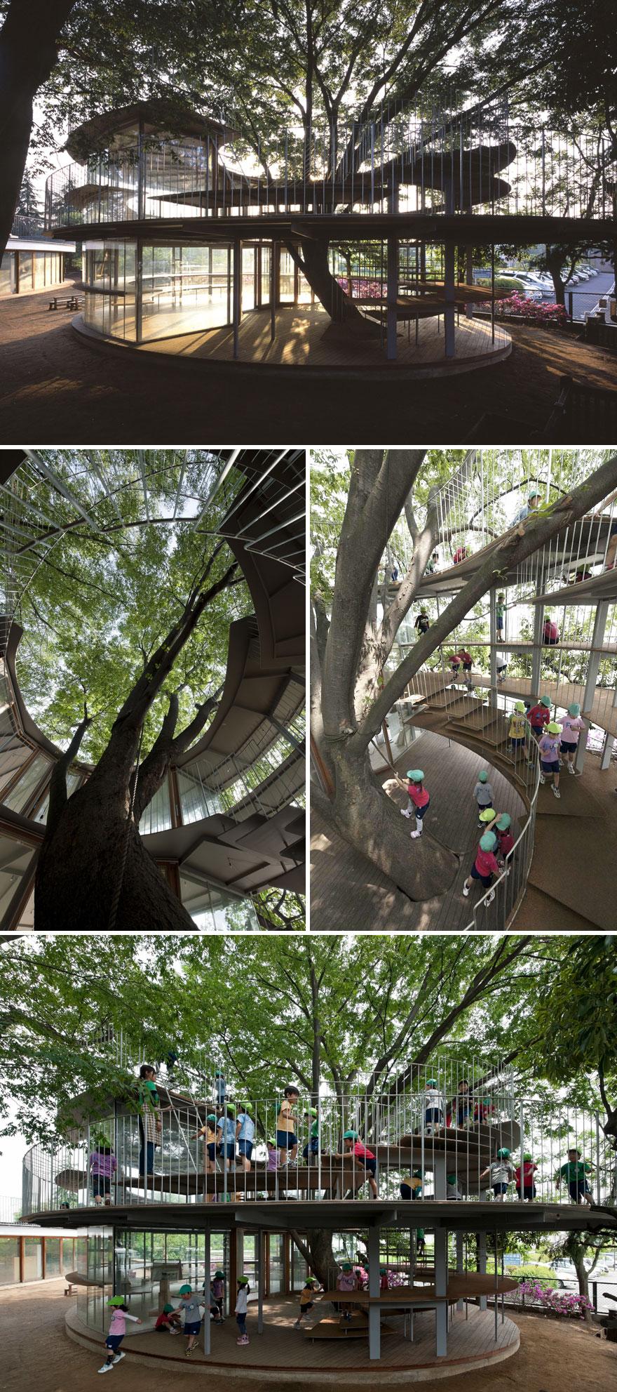Japanese Kindergarten Built Around A Tree