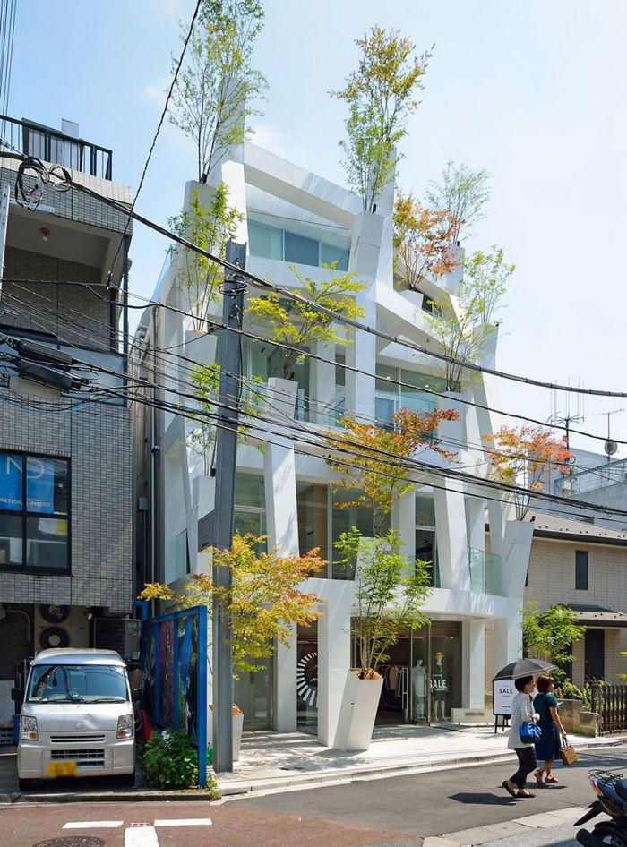 Omotesando Branches In Tokyo